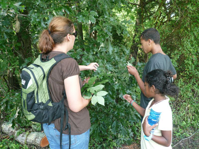 Log tree species with the Green Corps Adult Women Showing Two young kids outdoor plants in the woods